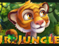 Jr Jungle